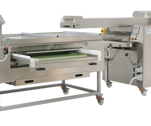 Bertuetti Seeding Machine - automatic